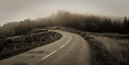 Road heads into woodland shrouded in cloud