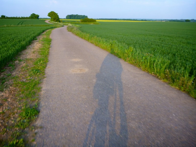 Shadow of a cyclist cast on a quiet lane running through open fields in the English countryside