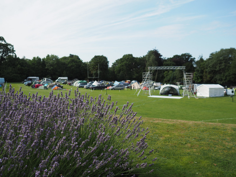 Some lavender bushes in foreground , campsite with big outdoor screen in background