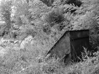 Black and white image of a rusting mining trolley disappearing into long grass