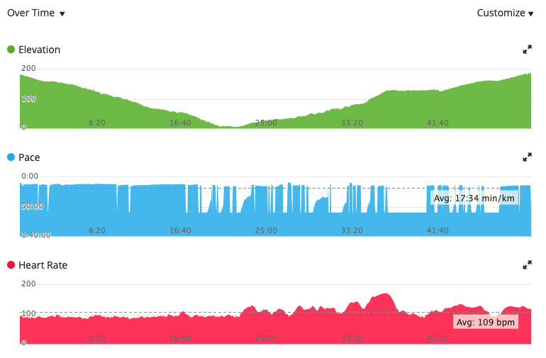 Screen-grab of Garmin Connect application showing three graphs; elevation, pace, and heart rate.